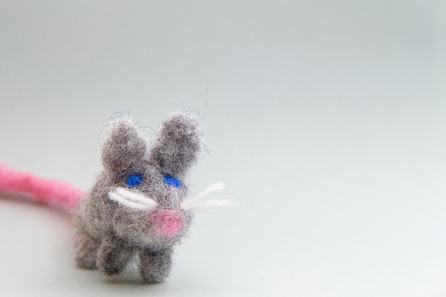 mouse-4207560_640